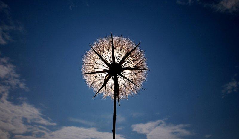 Всесветный бабий праздник. Народные приметы на 30 сентября