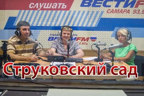 Радиопрограмма «Струковский сад» (№16, вышла в эфир 28.05.2015)