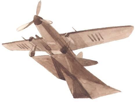 теленок-8