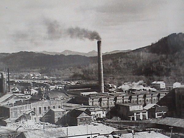 Бумажная фабрика Чехова в 1970-е гг.