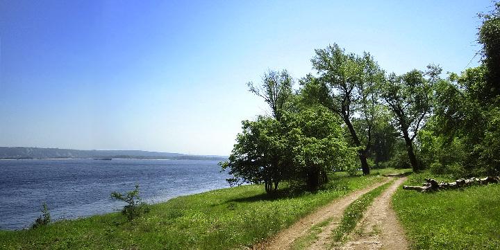 Кузьма и Демьян. Народные приметы на 14 июля