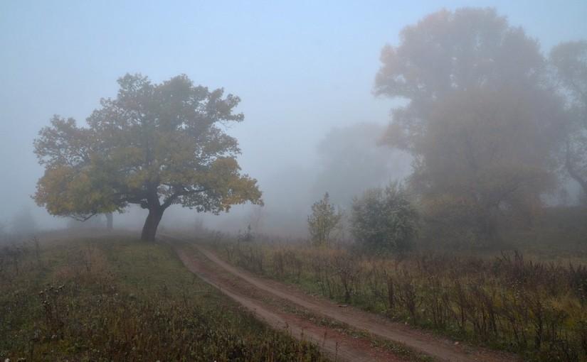 Проводы осени, встреча зимы. Народные приметы на 1 ноября