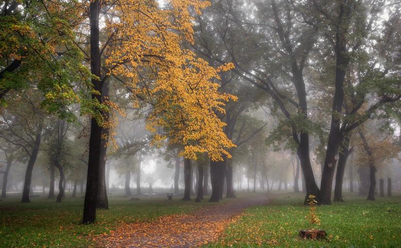 Большие Осенины. Народные приметы на 8 ноября