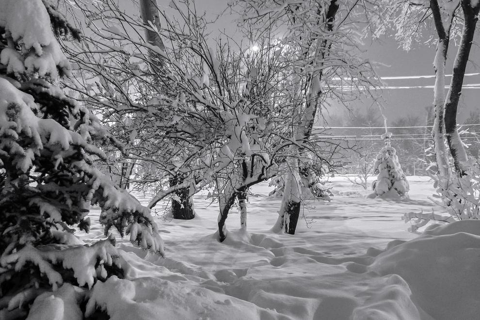 Причесала зима, куделя накрутила.