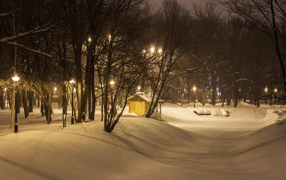 Вечерняя прогулка в парке Гагарина