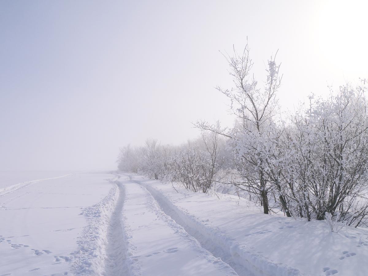 Легкий утренний туман