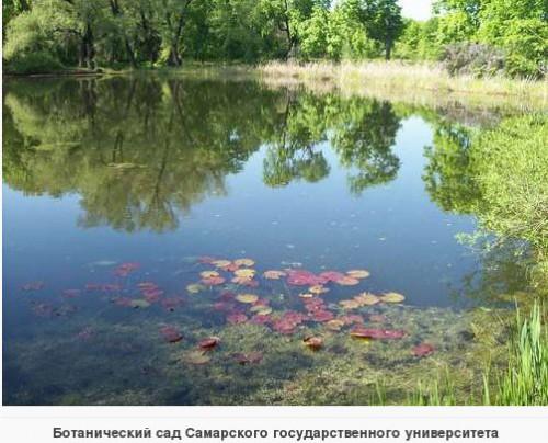 Исторический календарь Самары: 25 июня. Умерла А.Л.Бостром, мать писателя А.Толстого (1906), принято решение о создании Ботанического сада (1930), начали перестройку работы на военный лад (1941)