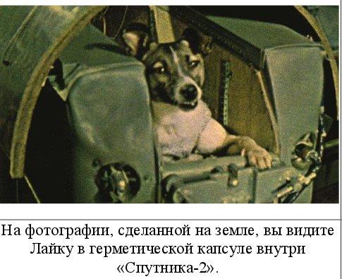 Исторический календарь Самары: 3 ноября. В Рождествено сгорело 56 домов (1861), начали строить мясокомбинат, да не достроили (1934), в космос выведен «Спутник-2» с собакой Лайкой (1957)